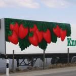 k-Knup_CH_004-1